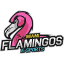 Miami Flamingos e-Sports